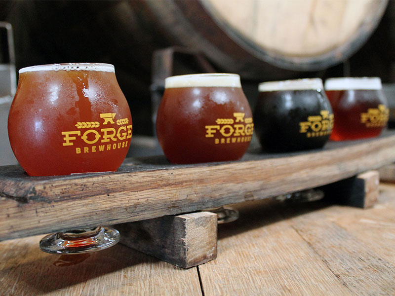 forge brewhouse flight